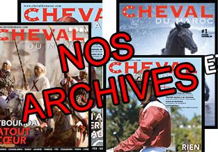 cheval-maroc Archive