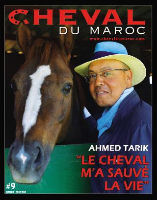 Cheval du Maroc N° 9