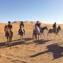 La ferme équestre de Dar Bouazza: Mohammed El Yassini, pionnier du tourisme équestre