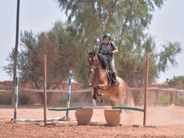 Jérôme Bédouet, un expert du saut d'obstacles à Marrakech